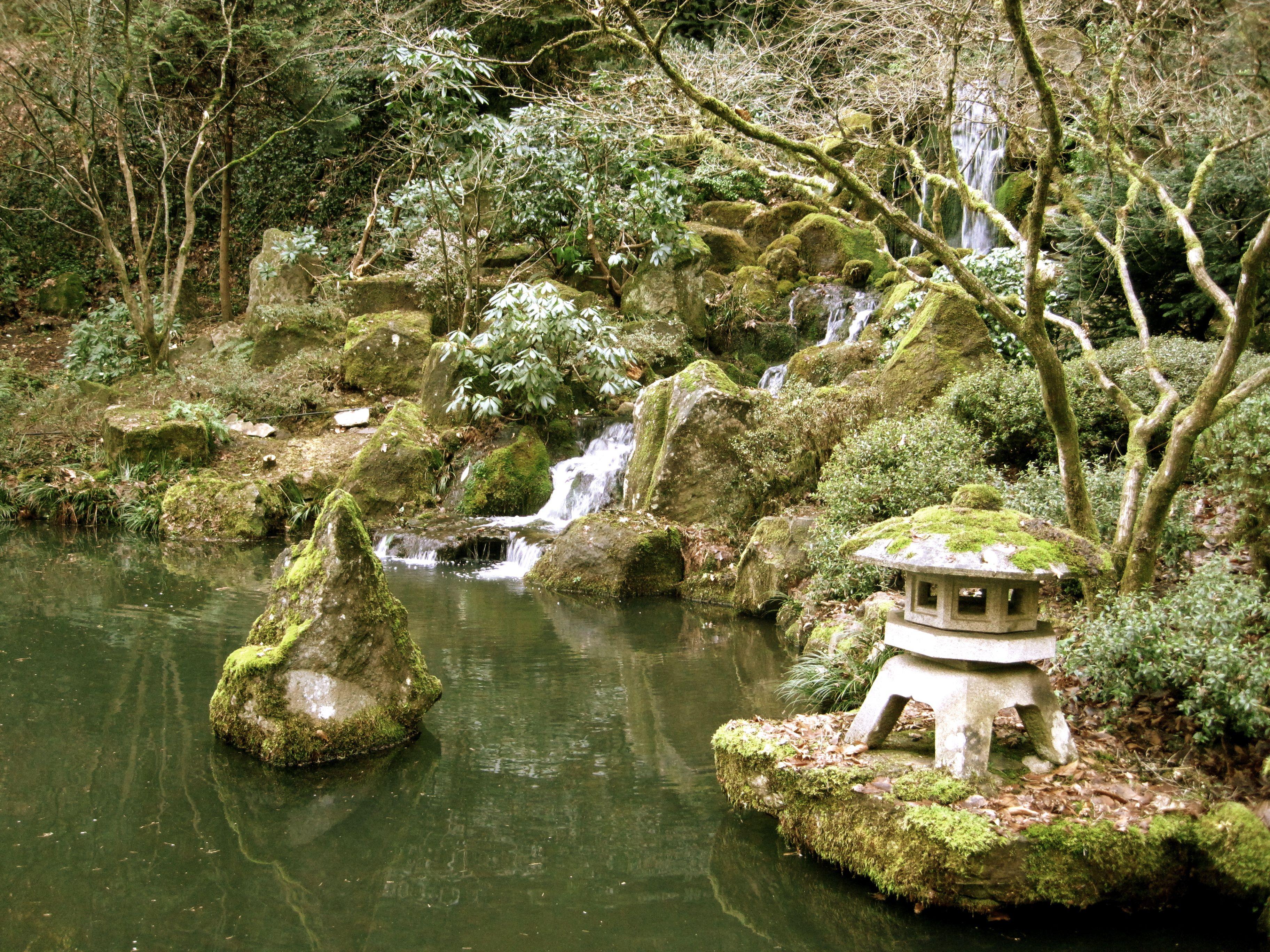 The portland japanese garden amanda elsewhere for Japanese water plants