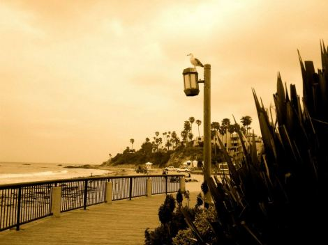 My journey started in Laguna Beach.