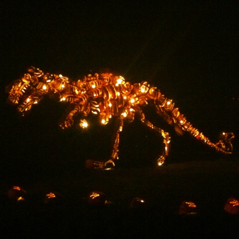 Pumpkin T-Rex, I love you